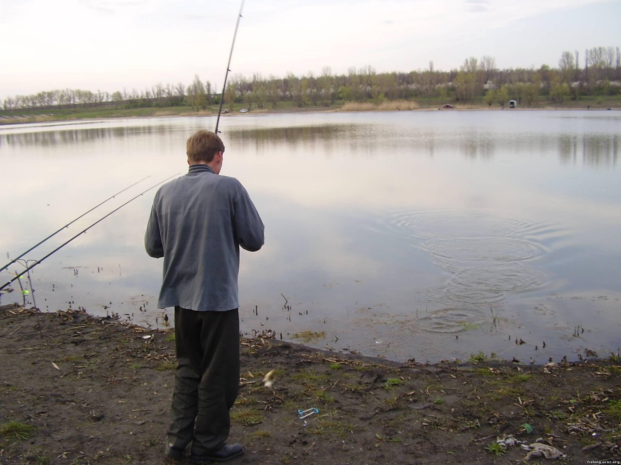 клев рыбы в лозовой
